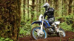Yamaha: WR250F