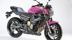 "Yamaha XJ6 ""Rosa Italia"" - Immagine: 10"