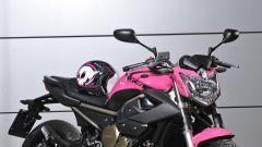 "Yamaha XJ6 ""Rosa Italia"" - Immagine: 8"