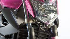 "Yamaha XJ6 ""Rosa Italia"" - Immagine: 7"