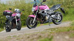 "Yamaha XJ6 ""Rosa Italia"" - Immagine: 4"