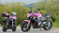 "Yamaha XJ6 ""Rosa Italia"" - Immagine: 3"