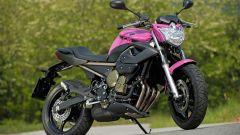 "Yamaha XJ6 ""Rosa Italia"" - Immagine: 2"