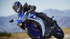 Yamaha YZF-R3 - Immagine: 5