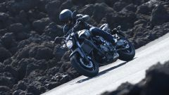 Yamaha MT-07 - Immagine: 12