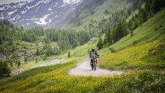 Zero FX Nature Experience: ci racconta cos'è Claudio Carfora, Country Manager Italia di Zero Motorcycles